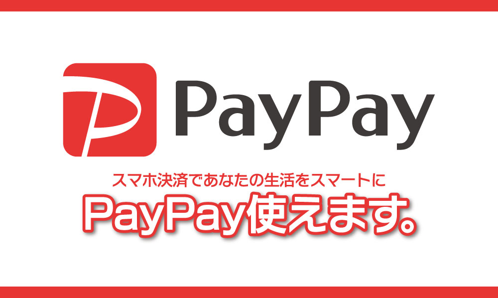 ★新規登録でPayPay残高500円相当をプレゼント!★
