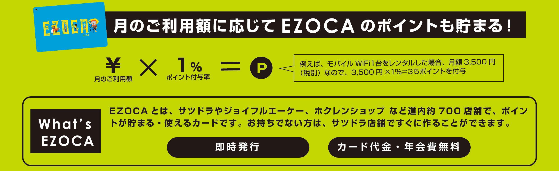 エゾカ説明画像